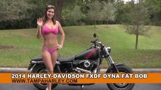 New 2014 Harley Davidson Fat Bob Motorcycle for sale