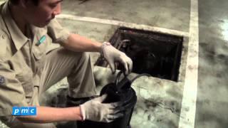 PMC - Bảo dưỡng bơm chống lụt tầng hầm