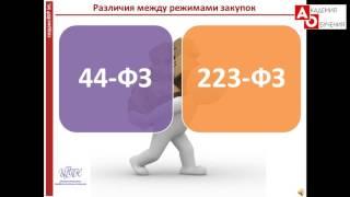 Тендер 223. Разграничение 223 ФЗ и 44 ФЗ