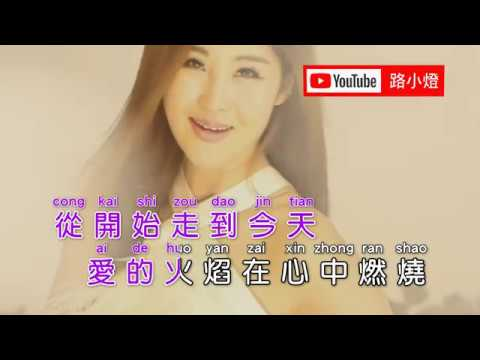 孫藝琪 | 思念難熬 | (DJ版)(1080P)KTV