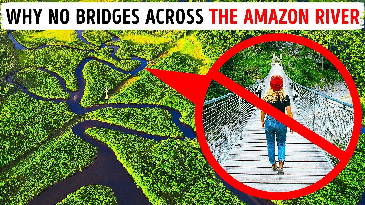 What Stops them Building Bridges over Amazon River