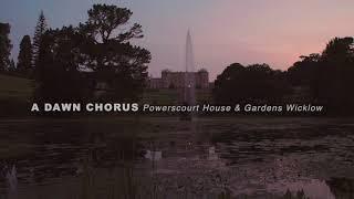 Dawn Chorus | Powerscourt House & Gardens, County Wicklow