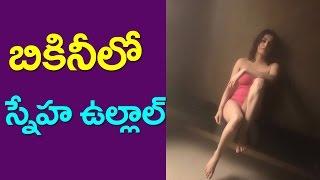 Sneha Ullal In Bikini | Sneha Ullal's Pink Bikini | Balakrishna Herione | Aishwarya Rai Duff |Taja30