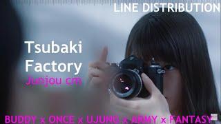 つばきファクトリー (Tsubaki Factory)『純情cm(センチメートル)』(Junjou cm) | 歌割 (Line Distribution)