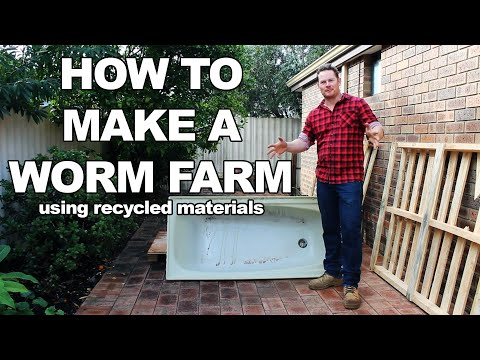 how to set up a worm farm