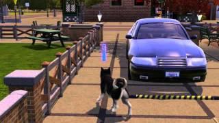 Симс 3 Питомцы : прогулка  собаки