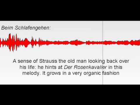 Strauss' Beim Schlafengehen from the Four Last Songs