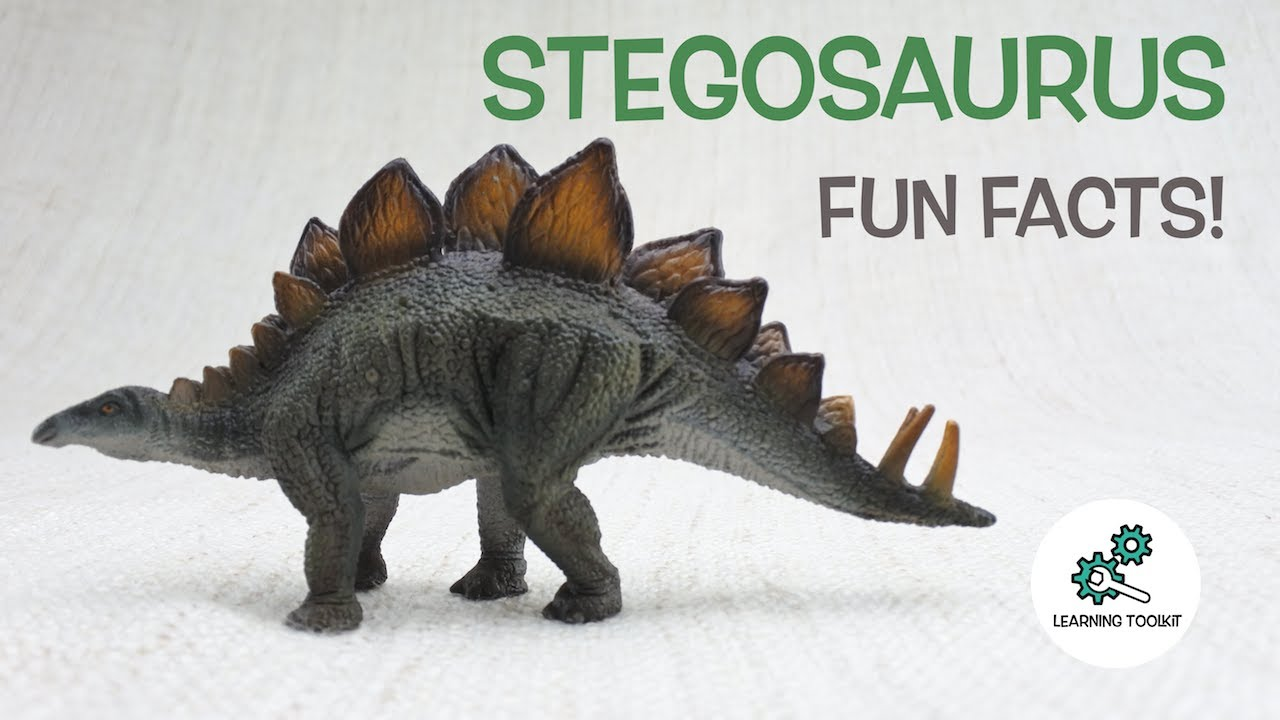 STEGOSAURUS FACTS | Fun & Educational | Dinosaurs For Kids ...