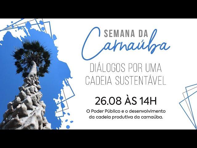 Semana da Carnaúba   26.08 - O Poder Público e o desenvolvimento da cadeia produtiva da carnaúba.