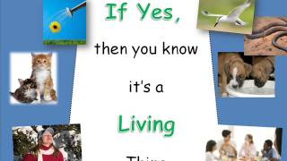 Living&NonlivingThings2013