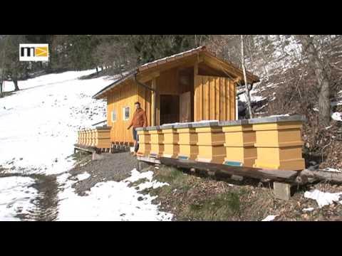 MEMA TV - KW 11 - ausgezeichneter Imker in Bruck-Oberaich