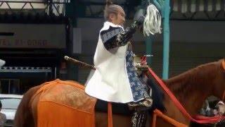 2016年4月10日、岡崎の桜まつりでの家康行列(俳優 里見浩太郎)の様子。
