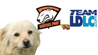 Dog Predicts Results In Cs:go, Ldlc-virtus.pro, 21-05-2014