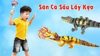 Trò Chơi Săn Cá Sấu Lấy Kẹo - Giải Trí Cho Bé ♥ Min Min TV Minh Khoa