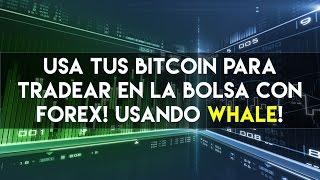 WHALE | Ganar Bitcoin en la bolsa! Forex y Trading con 1 click!