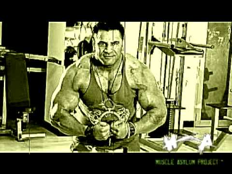 muscle asylum project Supplementsourceca canada's favorite retailer has the best price on muscle asylum project products.