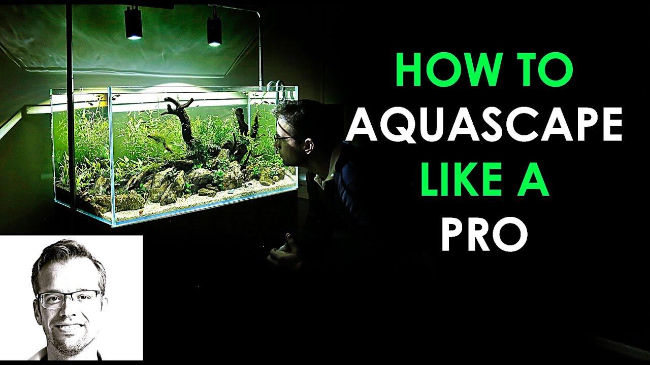 How To Aquascape A Nature Aquarium The Easy Way Youtube Ziolite Dan