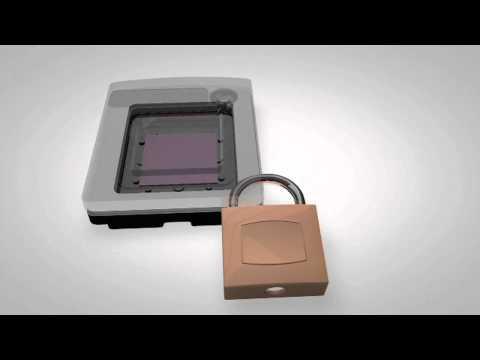 Digital PCR: Chip Technology with QuantStudio™ 3D Digital PCR System