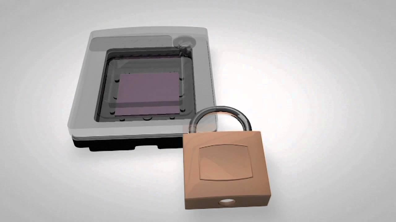 Digital PCR: Chip Technology with QuantStudio™ 3D Digital PCR ...