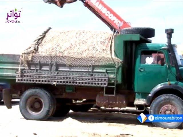 بيع الصدف والتراب مهنة يمتهنها بعض المواطنين بموريتانيا - تقرير محمد ولد الدده - قناة المرابطون