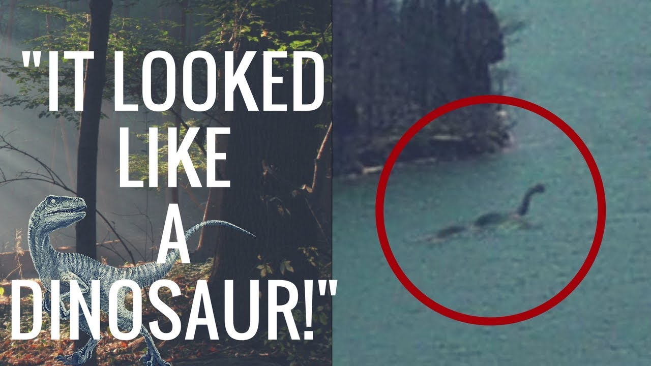 True Dinosaur Sightings From Across The World!  (Did They Really Go Extinct?)