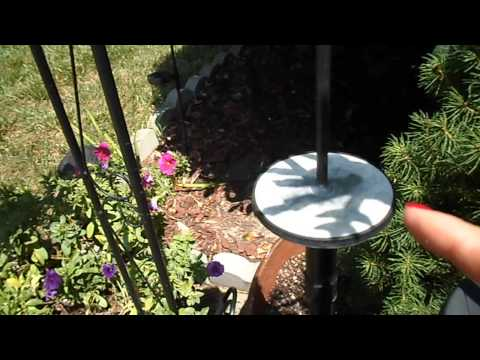 Solar lights - Restoring Back To Life after they stop Recharging