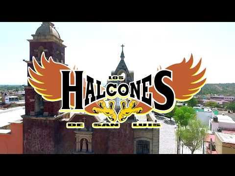 Los Halcones de San Luis -  La única estrella (Vídeo Oficial)