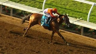 Beholder WINS the TVG Pacific Classic - Race Replay 2015