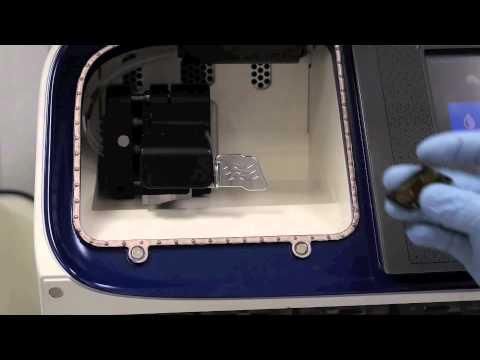 AULA 2 - Células da imunidade inata e adquirida. de YouTube · Duração:  8 minutos 51 segundos