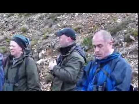 Shetland Wildlife Tour of southern France
