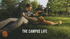 Life on a College Campus