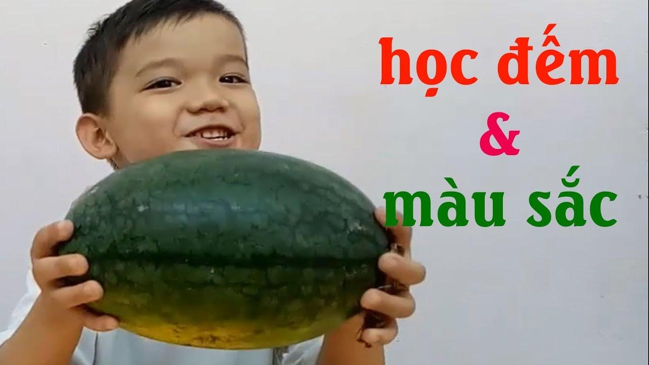 image Bé ăn dưa hấu học màu sắc & học đếm từ 1 đến 5 video cho bé yêu