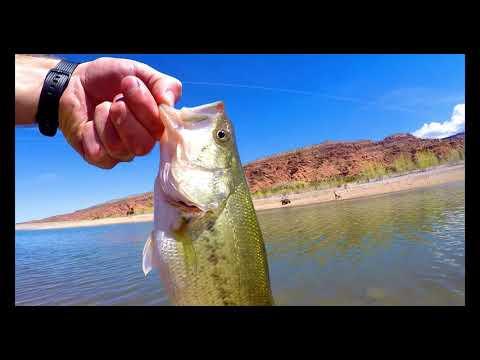 Moab Utah, Hiking, Fishing, And Desert Lobster