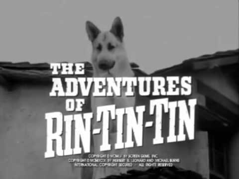 The Adventures of Rin Tin Tin 1954 - 1959 Opening and Closing Theme