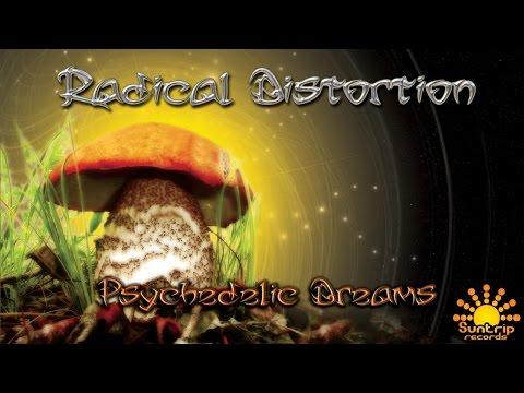 Radical Distortion - Spacecraft