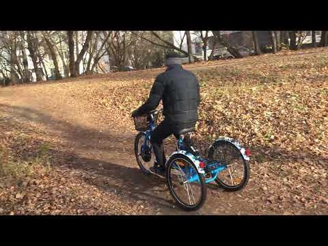 Трехколесный электровелосипед / трицикл / трайк - Horza Stels Trike 1500W