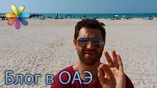 Арабские пряности, пляж и фудфестиваль в Дубае. Часть 4 из 5(Видео, которые просмотрели уже более 1 миллиона людей! http://bit.ly/1-000-000-views ↓ Больше полезного ниже! ↓ ♥ Подп..., 2016-08-08T08:00:02.000Z)
