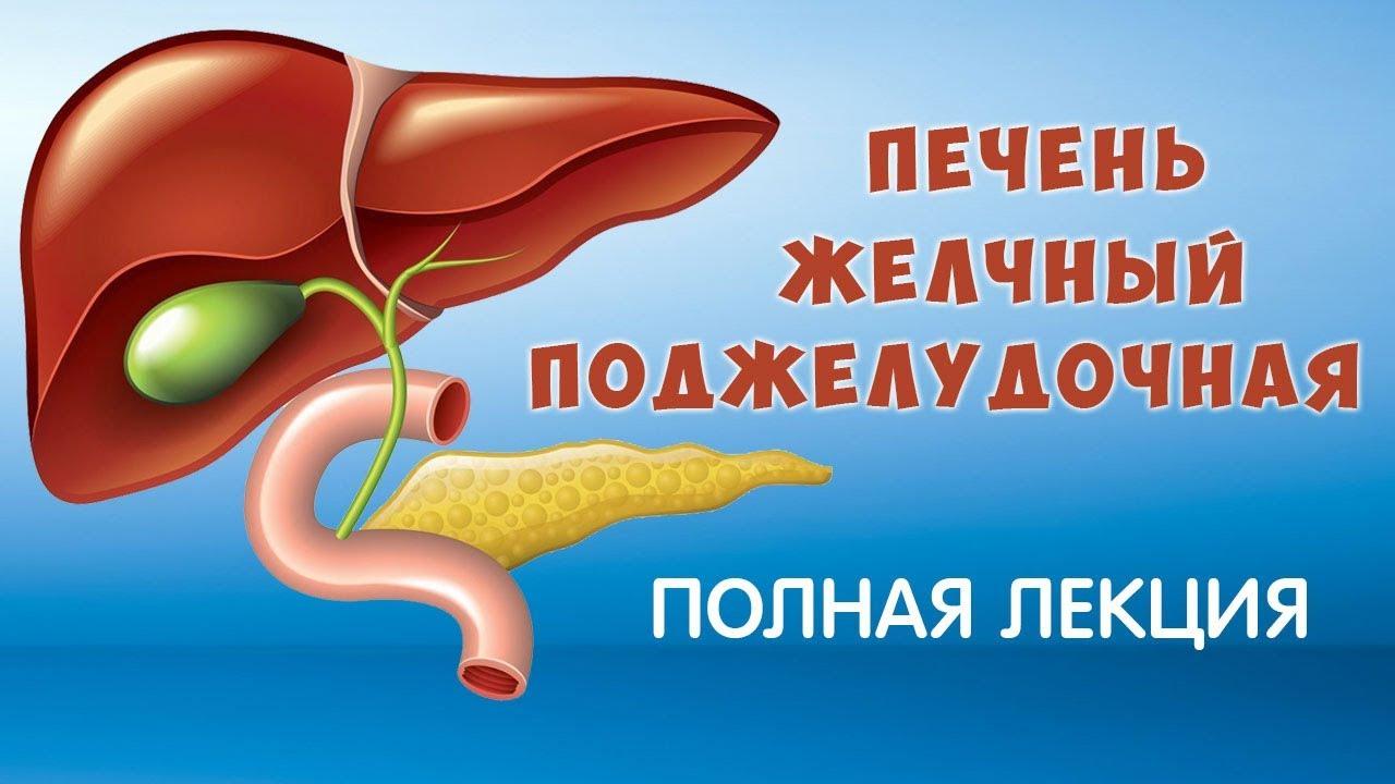 Печень. Желчный Пузырь, Поджелудочная железа. Болезни и лечение. Фролов Ю.А. 15 г.