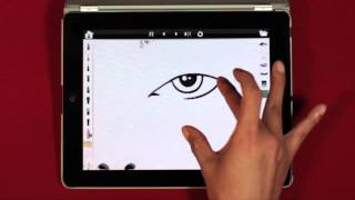What is Face Chart Pro?