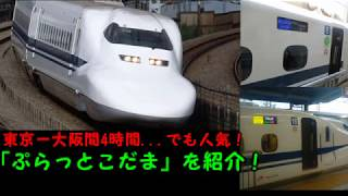JR東海ツアーズの「ぷらっとこだま」について解説!