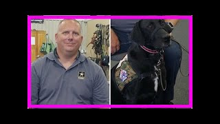 | Dog Rescue StoriesVeteran Overcomes Challenges With His Service Dog By His Side