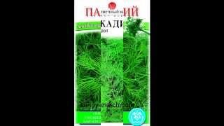 Семена укропа оптом(, 2013-05-06T12:21:33.000Z)