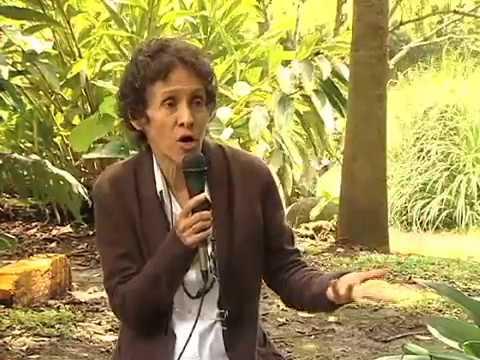 La criminalización de la protesta Social en Costa Rica