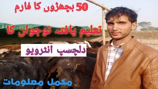 New Cattle Farm Launched|Motivate cattle Farming in Pakistan|Cattle Farming Ideas|BTO
