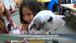 'Healing Species' Program Brings Four-Legged Teachers to Spring ISD Students