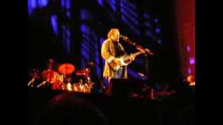 Watch Stephen Stills Wounded World video