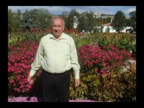 Букет, доставка цветов элиста долина