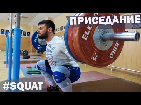 Back SQUAT / A.TOROKHTIY (weightlifting & Crossfit)