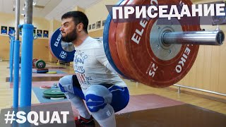 Back SQUAT / A.TOROKHTIY (weightlifting & crossfit)