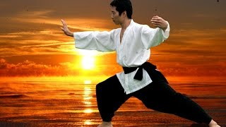 Elite TOMA martial arts for Adults